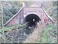 SO9494 : North portal of Coseley Tunnel by John M