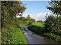 TG0508 : Stone Lane by Roger Gilbertson