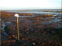 TA3117 : Sunk Island Sands by Paul Glazzard