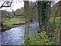 SJ9664 : Wincle - River Dane by Mike Harris