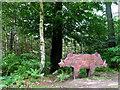 SJ5369 : Two-headed Hog - Sandstone Trail by Ian Nadin