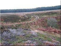 NS4580 : Track at crossing of Knockupple Burn by Chris Wimbush