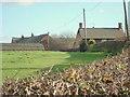 SJ6679 : Reed House Farm Antrobus by David Marten