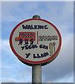 SM9429 : Walking bus stop, Station Road by ceridwen