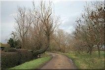 TL5677 : Track to Nornea Farm by Bob Jones