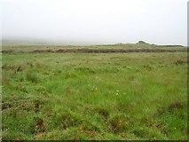 R6691 : Cappaghabaun Mountain by Richard Webb