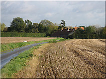 TG0800 : The Road To Wymondham by Roger Gilbertson