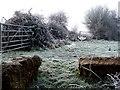 SP8723 : Footpath near Glebe Farm by Rob Farrow