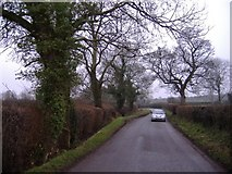SO4640 : The road to Upper Breinton by Roger Cornfoot