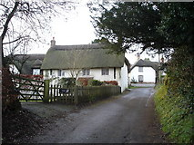 ST9311 : Church Cottages, Tarrant Hinton by Toby