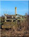 SJ5067 : Footbridge by David Marten
