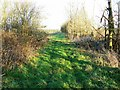 SP2306 : Bridleway west of A361 facing east by Brian Robert Marshall