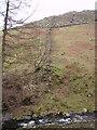 SD2393 : Above Stephenson Ground by Michael Graham