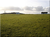 NL9647 : Sheep grazing machair by Roger McLachlan