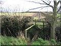SJ4561 : Footpath Crossing Ditch by John S Turner