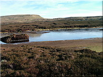 NY7824 : Un-named tarn west of Mickle Fell by David Brown