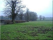 SU1792 : Fields near Hannington by Roger Cornfoot