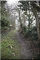 TL2756 : Footpath, Great Gransden, Cambridgeshire by Martin John Bishop