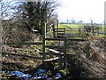 SJ4958 : Footpath from Burwardsley Road to Dark Lane #4 by John S Turner
