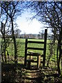 SJ4957 : Footpath from Burwardsley Road to Dark Lane #9 by John S Turner