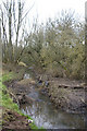 SP0183 : The Bourn Brook, Woodgate Valley Country Park by Phil Champion