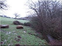 SO4000 : Footpath to Coed Garw by Jonathan Billinger