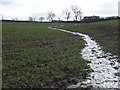 SP7432 : Temporary stream, Thornborough by Andrew Smith