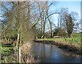 SJ6047 : River Weaver, near Woodcotthill Farm by Espresso Addict