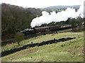 SD7919 : Steam train - East Lancs Railway by liz dawson