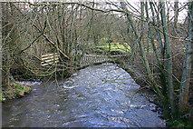 SO0664 : River Dulas by Martin Loader