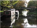 SO8785 : Newtown Bridge, Stourbridge Canal. by Peter Wasp