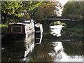 SO8785 : Newtown Bridge, Stourbridge Canal. by Peter Wasp