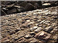 SX8959 : Glowing cobblestones slope down to the beach by Tom Jolliffe