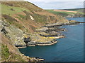 SX1550 : Lansallos: coastline by Brian