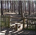 SP9233 : Stile into New Wavendon Heath by Rob Farrow