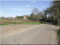 SZ0497 : Knighton Lane by Mike Smith