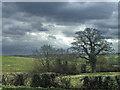 TQ3097 : Farmland south of Hadley Road, Enfield by Christine Matthews