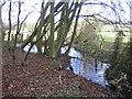 SP7310 : Stream near Cuddington by Andy Gryce