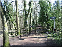 SK3181 : Tracks and signpost in Ecclesall Woods by Stephen Ward