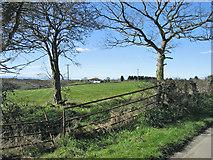 ST0670 : Farmland, Cwm-y-Breach, Moulton, near Barry. by Peter Wasp