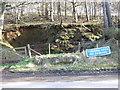 NJ5608 : Disused sandpit by Stanley Howe