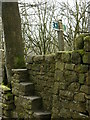 SD8114 : Unusual stile near Grindles farm by liz dawson