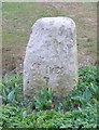 TL2780 : Milestone at Wistow by Andrew Tatlow