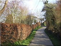 SW6923 : Skyburriowe Lane by Jonathan Billinger