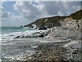 SW6620 : Coastline at Gunwalloe Church Cove by Mari Buckley