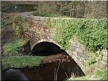 SE0023 : New Bridge, Cragg Vale by Paul Glazzard
