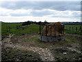 SP7320 : Dismantled Railway near Shipton Lee by Martin Addison