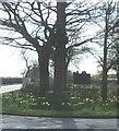 SJ6861 : Cross near Walley's Green by Dan Haigh