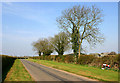 SP6331 : Road near Barton Hartshorn by Martin Loader