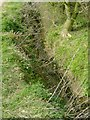TL1137 : Small stream / drain by John Yaxley
